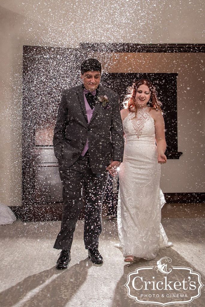 Snow in Florida Wedding